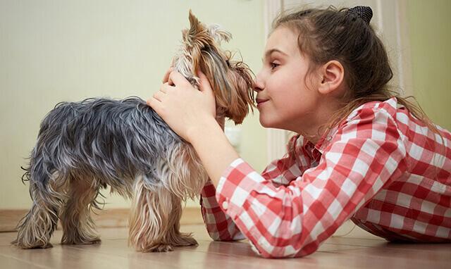 Une fille qui joue avec son chien